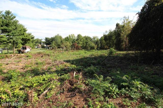 Greenhaven Drive, Elkton, MD 21921 (#CC9778982) :: Pearson Smith Realty