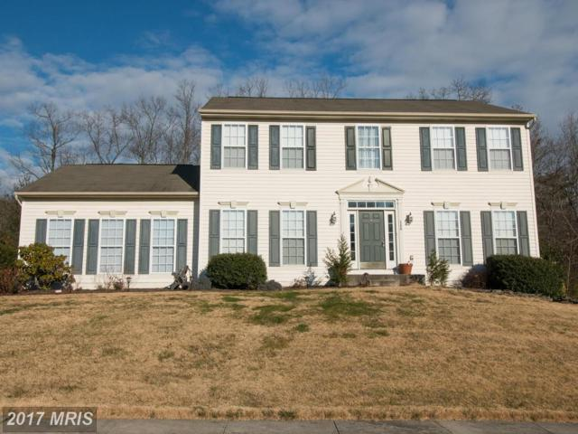 148 Whitaker Avenue, North East, MD 21901 (#CC9855137) :: Pearson Smith Realty