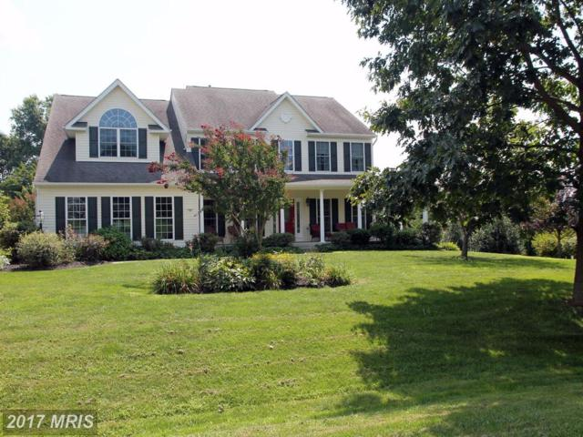 150 Woodrow Lane, Port Deposit, MD 21904 (#CC9984753) :: Pearson Smith Realty