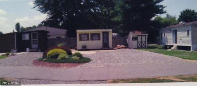 203 Oklawaha Lane, Earleville, MD 21919 (#CC9987744) :: Pearson Smith Realty