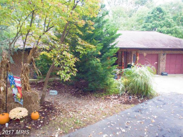4624 Duley Drive, White Plains, MD 20695 (#CH10078929) :: Pearson Smith Realty