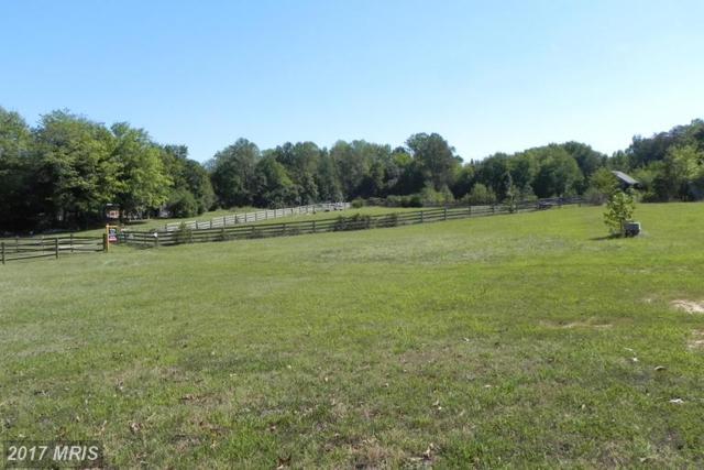 Josie Place, Hughesville, MD 20637 (#CH9773150) :: LoCoMusings