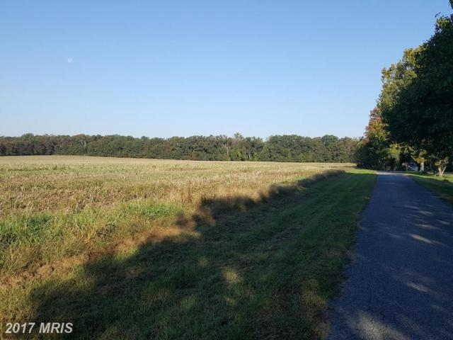 Raphael Drive, Pomfret, MD 20675 (#CH9790792) :: Pearson Smith Realty