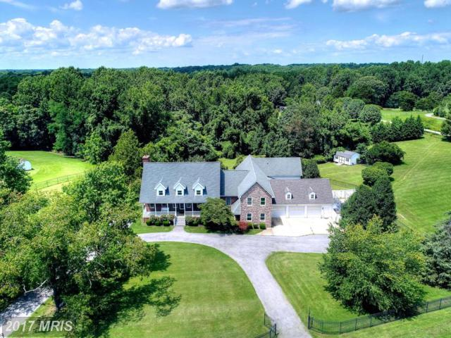 8715 Wedding Drive, Welcome, MD 20693 (#CH9974399) :: LoCoMusings
