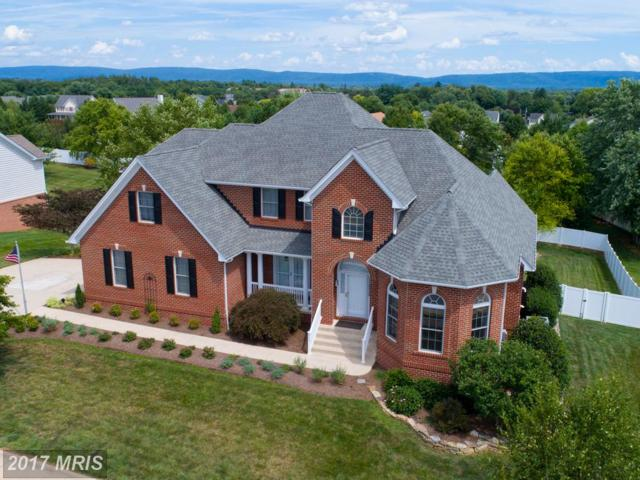 204 Early Drive, Berryville, VA 22611 (#CL10000224) :: Pearson Smith Realty