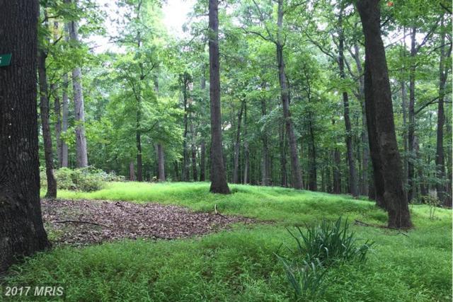 35 Dogwood Lane, Bluemont, VA 20135 (#CL9814807) :: LoCoMusings