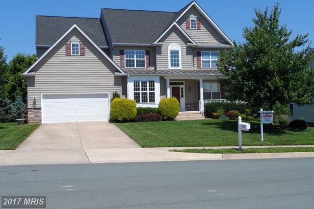 229 Tyson Drive, Berryville, VA 22611 (#CL9880224) :: LoCoMusings