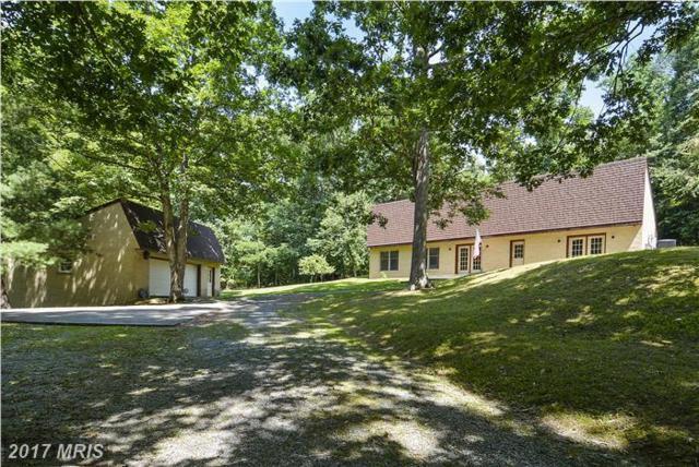 360 Ebenezer Road, Bluemont, VA 20135 (#CL9997609) :: Pearson Smith Realty