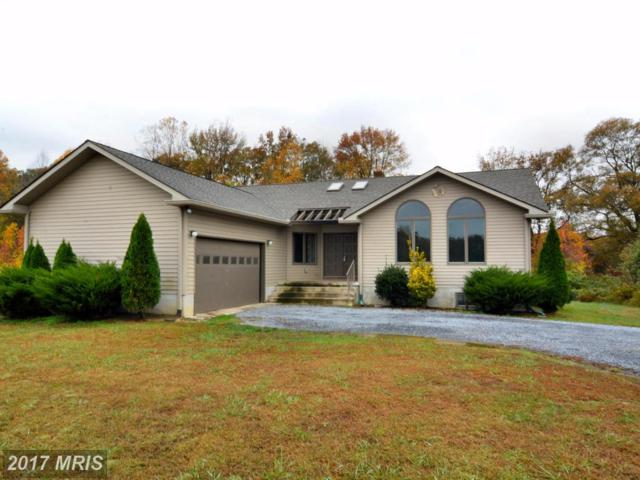 24785 Riverview Way, Ridgely, MD 21660 (#CM10023382) :: Pearson Smith Realty