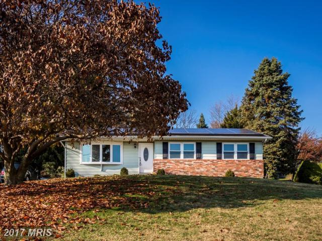 5240 Freter Road, Sykesville, MD 21784 (#CR10097081) :: Pearson Smith Realty