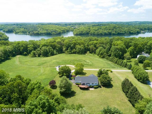 541 Candle Light Cove Drive, Sykesville, MD 21784 (#CR10243721) :: The Gus Anthony Team