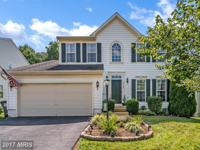 12322 Osprey Lane, Culpeper, VA 22701 (#CU10021309) :: Pearson Smith Realty