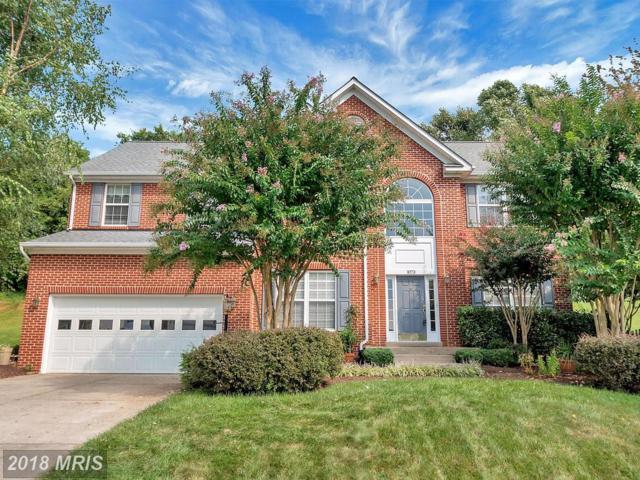 1073 Virginia Avenue, Culpeper, VA 22701 (#CU10032252) :: Pearson Smith Realty