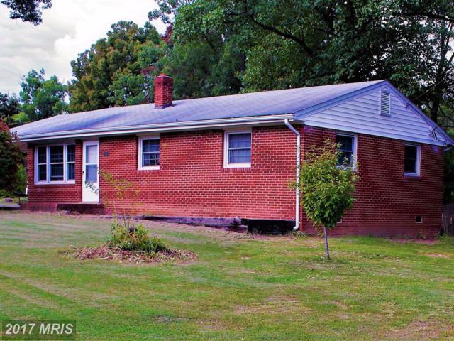 7069 Oak Drive, Reva, VA 22735 (#CU10058801) :: LoCoMusings