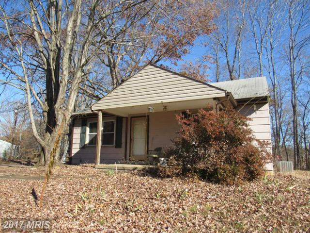 4513 Waterford Road, Amissville, VA 20106 (#CU10098580) :: Pearson Smith Realty
