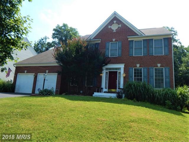 471 Blossom Tree Road, Culpeper, VA 22701 (MLS #CU10191587) :: Explore Realty Group