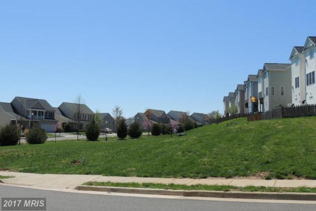 Dove Lane, Culpeper, VA 22701 (#CU8320984) :: LoCoMusings