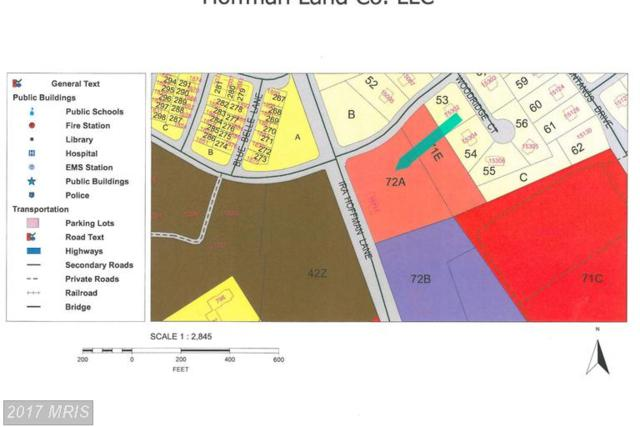 15711 Ira Hoffman Lane, Culpeper, VA 22701 (#CU8417762) :: LoCoMusings