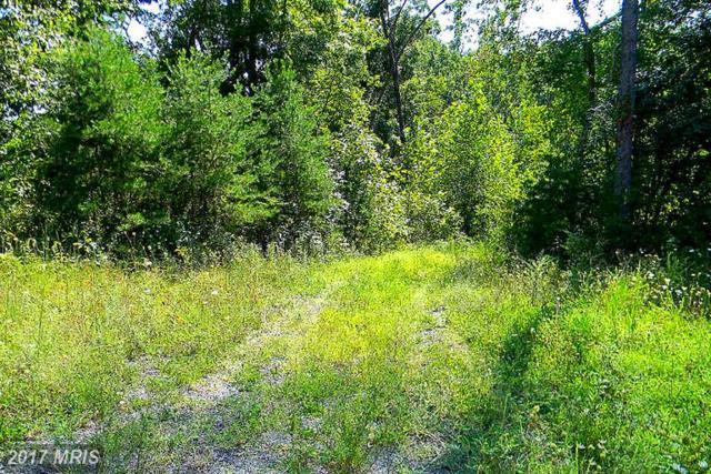 0 Lee Highway E, Amissville, VA 20106 (#CU9754501) :: LoCoMusings