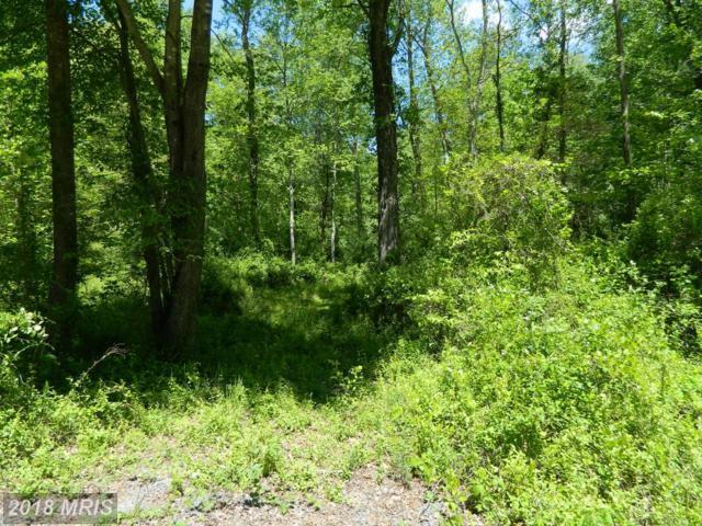 Deerfield Lane, Jeffersonton, VA 22724 (#CU9938787) :: Green Tree Realty
