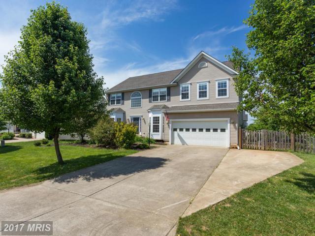 540 Greenbriar Drive, Culpeper, VA 22701 (#CU9952776) :: LoCoMusings