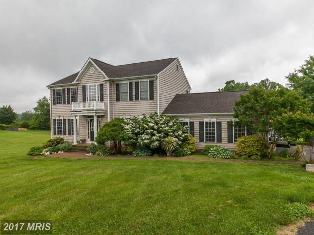 19133 Canterbury Court, Culpeper, VA 22701 (#CU9959305) :: The Nemerow Team