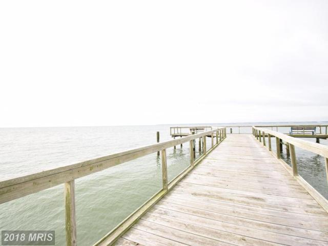 4278 Bay Shore Road, Taylors Island, MD 21669 (#DO10088012) :: The Gus Anthony Team