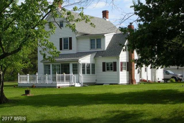 4419 Bay Shore Road, Taylors Island, MD 21669 (#DO9666485) :: LoCoMusings