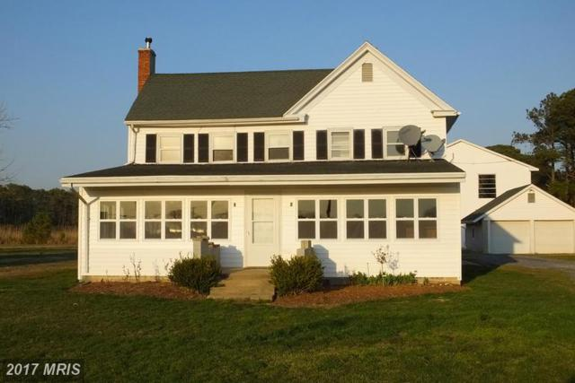 2609 Old House Point Road, Fishing Creek, MD 21634 (#DO9775224) :: LoCoMusings