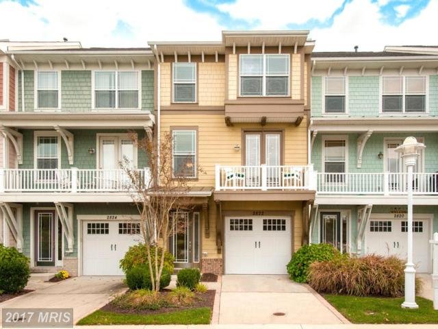 2822 Persimmon Place B3, Cambridge, MD 21613 (#DO9831641) :: LoCoMusings