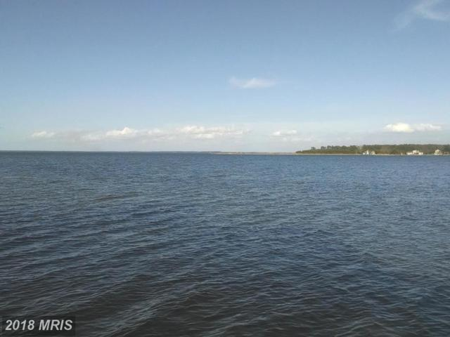 Twin Point Cove Road, Cambridge, MD 21613 (MLS #DO9872259) :: RE/MAX Coast and Country
