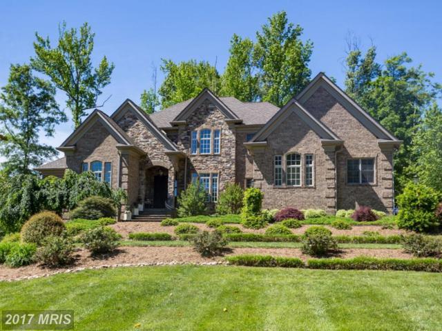 6 Delahay Drive, Fredericksburg, VA 22401 (#FB9951101) :: Pearson Smith Realty
