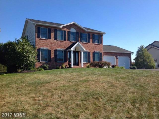 658 Mahantango Drive, Chambersburg, PA 17202 (#FL10072418) :: LoCoMusings