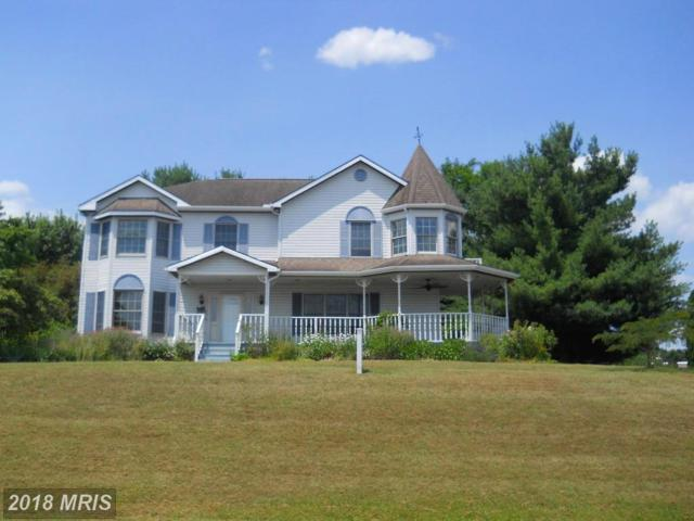 1977 Castlegreen Drive, Greencastle, PA 17225 (#FL10294838) :: The Maryland Group of Long & Foster