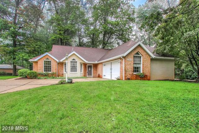 6132 Greenbriar Lane, Fayetteville, PA 17222 (#FL10331221) :: The Maryland Group of Long & Foster