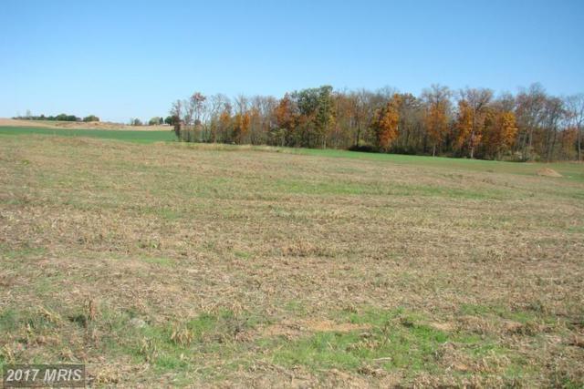 Scarlet Oak Drive, Mercersburg, PA 17236 (#FL9546009) :: LoCoMusings