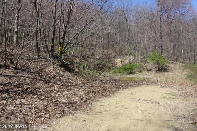 Mountain Road, Mercersburg, PA 17236 (#FL9616577) :: LoCoMusings