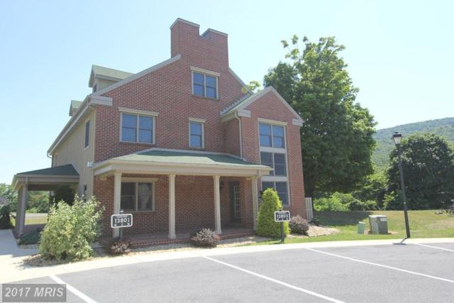 13805 Pond View Lane, Mercersburg, PA 17236 (#FL9720602) :: LoCoMusings