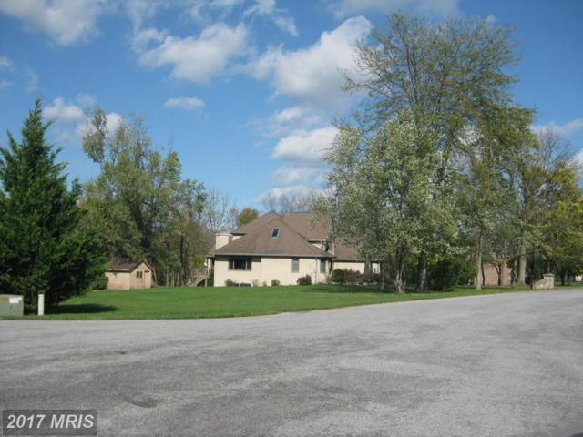 288 Sandoeshire Lane, Chambersburg, PA 17201 (#FL9777141) :: LoCoMusings