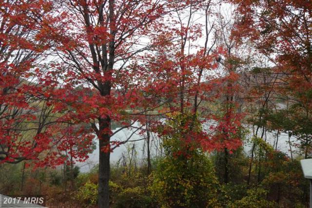 14054 Maple Way, Mercersburg, PA 17236 (#FL9788778) :: LoCoMusings