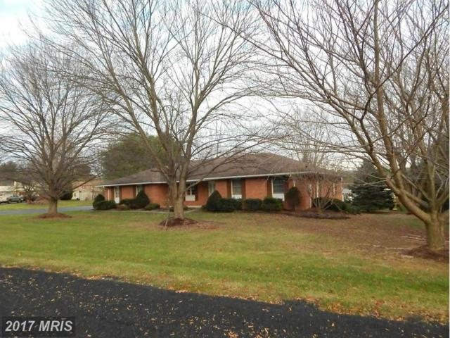 11830 Orlando Circle, Waynesboro, PA 17268 (#FL9822383) :: Pearson Smith Realty