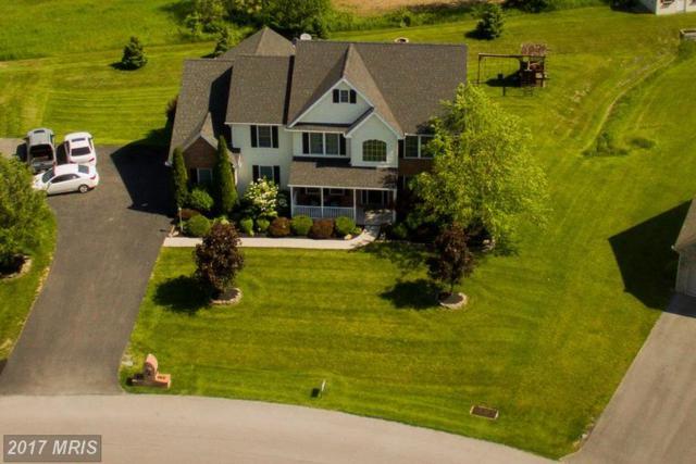 1459 Hunters Chase, Chambersburg, PA 17202 (#FL9951045) :: LoCoMusings