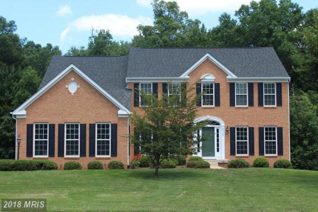 4540 Spring Run Road, Warrenton, VA 20187 (#FQ10285688) :: The Maryland Group of Long & Foster
