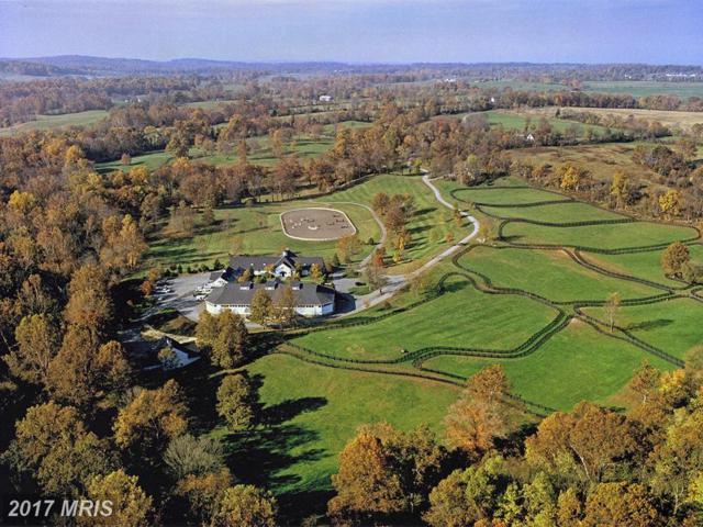 5447 Rallywood Farm Lane, The Plains, VA 20198 (#FQ9724482) :: Pearson Smith Realty