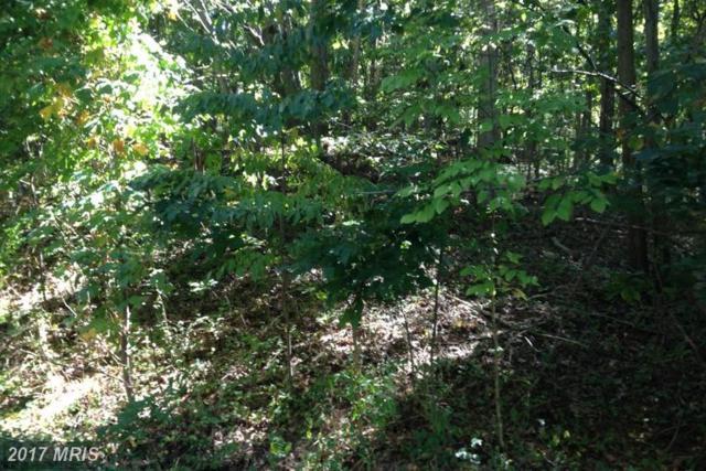 7312 Baldwin Ridge Road, Warrenton, VA 20187 (#FQ9799756) :: LoCoMusings