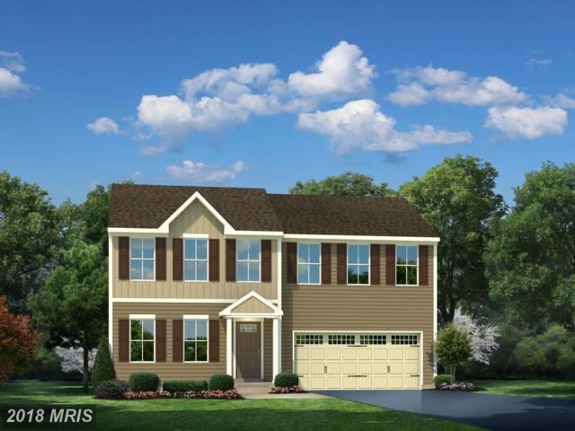 04 Godwins Landing Drive, Remington, VA 22734 (#FQ9906480) :: Pearson Smith Realty