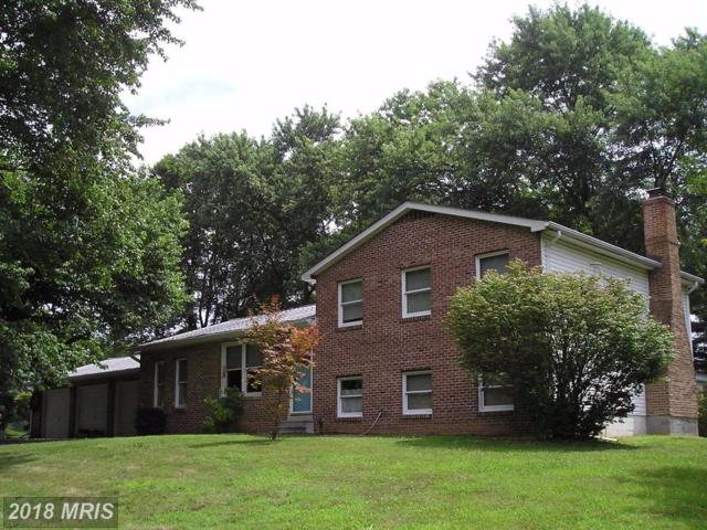 2705 Laura Drive, Frederick, MD 21704 (#FR10010094) :: Pearson Smith Realty