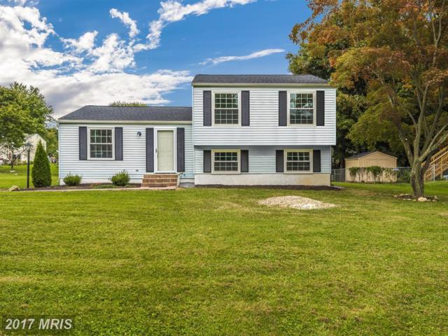 7026 Willow Tree Drive S, Middletown, MD 21769 (#FR10055284) :: Pearson Smith Realty