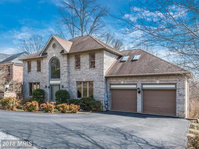 10007 Picea Court, New Market, MD 21774 (#FR10162841) :: Advance Realty Bel Air, Inc