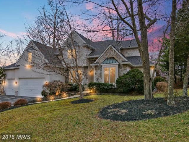 6811 Cherry Tree Court, New Market, MD 21774 (#FR10176819) :: Bob Lucido Team of Keller Williams Integrity
